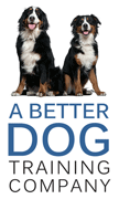 A Better Dog Training