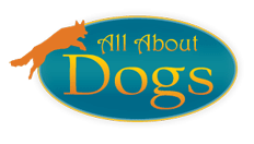 All About Dogs Inc