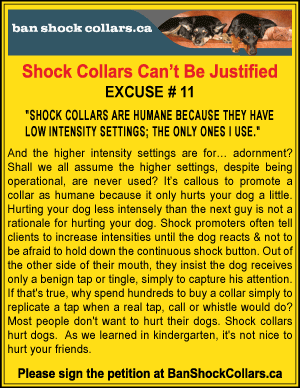 SHOCK COLLARS CAN'T BE JUSTIFIED. EXCUSE # 11