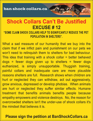 SHOCK COLLARS CAN'T BE JUSTIFIED. EXCUSE # 12