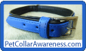 Pet Collar Awareness
